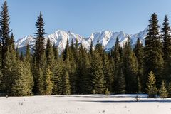 Snow mountains peaks and forest landscape under sunlight early spring as background. Nature sky beautiful outdoor scenic travel green natural view blue hill stock images