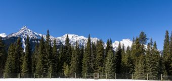 Snow mountains peaks and forest landscape under sunlight early spring as background. Nature sky beautiful outdoor scenic travel green natural view blue hill royalty free stock images