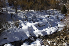Snow in the mountains. Small Almaty gorge spring Royalty Free Stock Image