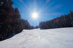 Snow in the mountains and the sun is shining. The sun shines brightly. Snow in the mountains. Firs are covered with snow. The sky is blue Royalty Free Stock Images