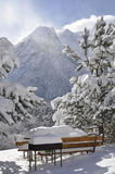 Snow on the mountains in winter. The photo was taken in North Ossetia, in the Digor gorge Royalty Free Stock Photography