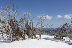 Snow on the mountainside Stock Photography