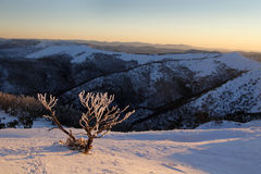 Snow on the mountainside Stock Images