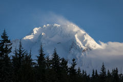 Snow on Mt. hood, Oregon Stock Image