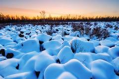 The snow mushroom sunset glow Stock Photos