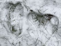 Snow. My footsprint in the snow with big feet for small women like stock image