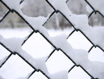 Snow on net Royalty Free Stock Image