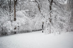 Snow in New York. It was taken to record the continuous storm in  New York Stock Images