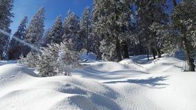 Snow. Nice sonne lachen Stock Photos