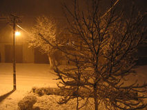 Snow night stock image