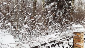 Free Snow On Fence And Bushes - Wintertime Royalty Free Stock Photo - 164892895