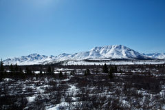 Snow over Denali National Park Stock Image