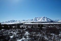 Snow over Denali National Park Stock Image