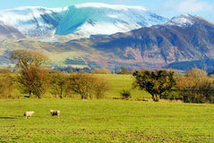Snow over Skiddaw Stock Image