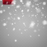Snow overlay on transparent background. Vector falling snowflakes isolated. Snow overlay on transparent background. Vector illustration of falling snowflakes Stock Image