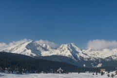 Snow på berg Arkivbilder
