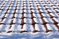 Snow på taket alps räknade trän för vintern för schweizare för snow för husplatsen lilla Royaltyfria Foton