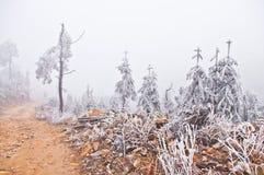 Snow på vägen efter stor snow Arkivfoton