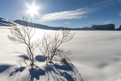 Snow panorama 5 Royalty Free Stock Photography