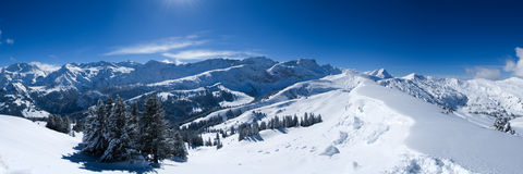 Snow Panorama. Fresh fallen snow in the Bernese Alps near Lenk, Switzerland Stock Images