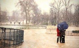 Snow in paris Stock Images