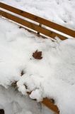 Snow in park. The snow on the bench Royalty Free Stock Images