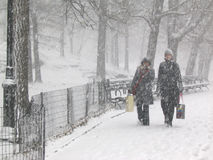 Snow in the park. Whomen with shopping bags in the snow day in Central Park, New York Stock Photos