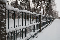 Snow in the park Royalty Free Stock Photography