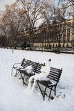 Snow Park In Bloomsbury (London) Stock Photography