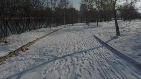 Snow in the park. Snow among trees and in the park stock footage
