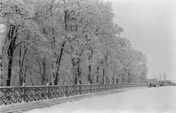 Snow Park. Winter trail running Royalty Free Stock Photos