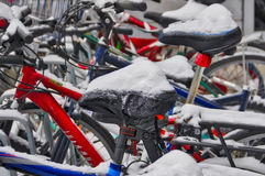 Snow on parked bicycles Stock Photography