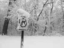 SNOw Parking. Snow covered sign in a winter forest Royalty Free Stock Photos