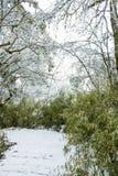 Snow path Stock Photos