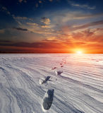 Snow-path in steppe on sunset background Royalty Free Stock Photography