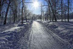 Snow path and Sun Royalty Free Stock Photo