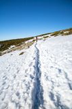 Snow path to woman Stock Photos
