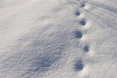 Snow pattern Stock Photos