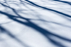 Snow pattern. Shadows of trees on the snow surface Stock Photography