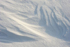 Snow patterns Royalty Free Stock Image