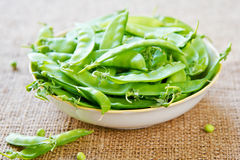 Snow pea Stock Image