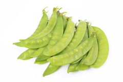 Snow pea Royalty Free Stock Photography