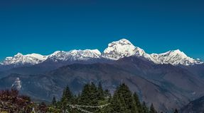 Snow Peak of Dhaulagiri Mountain in the Himalayas in Nepal. View from Poon Hill.  royalty free stock photo