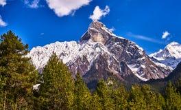 Snow peak in Tibet Stock Photo