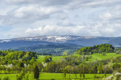 Snow peak. View of the green meadows and snowy hill Royalty Free Stock Images