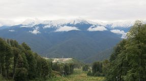 Snow peaks. Snow-capped peaks, the forest on a mountain slope Royalty Free Stock Photography