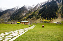 Snow peaks and garden. Fish point at Sonamarg, a main attraction of Kashmir Tourism, India. It lies at an altitude of 2800 metres above sea level. In its stock image