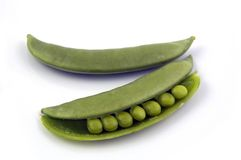 Snow Peas. Half Open Royalty Free Stock Photography