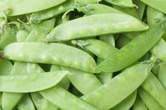 snow peas Stock Image
