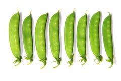 Snow peas Stock Photography